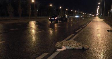 На проспекте Победы ноги погибшего в ДТП пешехода разбросало на десятки метров