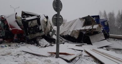 Водитель погиб при лобовом столкновении двух грузовиков под Казанью