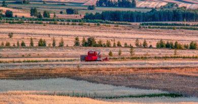 К. Биждов: Омская область в 2019 г. увеличит охват посевов страхованием более в 4 раза