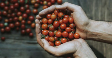 Национальный союз агростраховщиков объявляет Всероссийский конкурс СМИ «Защитим агробизнес вместе»