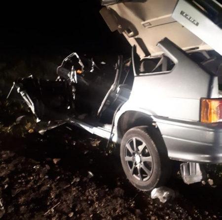 В Татарстане в ДТП погибли девушка и ее сын. Все из-за лося