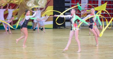 В Казани пройдет благотворительный турнир по художественной гимнастике «Мы вместе»