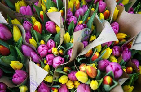 Голландский тюльпан vs краснодарская роза. Что спасет российское цветоводство от банкротства?