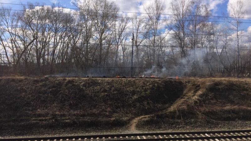 Жителям Татарстана из-за высокого класса пожарной опасности запретили посещать леса