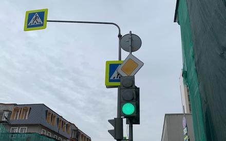 Пенсионер на БМВ в Казани сбил девочку, которая переходила дорогу на зеленый свет