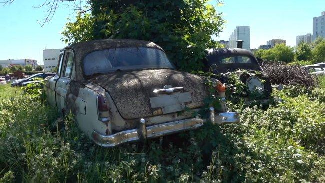 Поле раритетов – заброшенные автомобили времен СССР