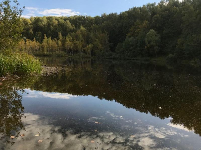 Для участников экопикника на озере Лесном проведут конкурсы и мастер-классы