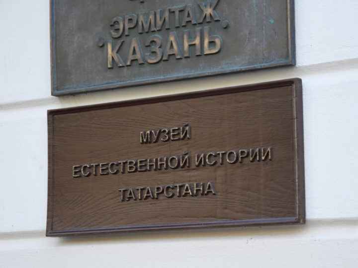 В центре «Эрмитаж-Казань» откроется выставка турецких художников «Анатолийский бриз»